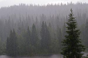 lietuviai Norvegijoje