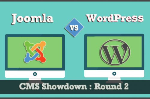 wordpress programavimas