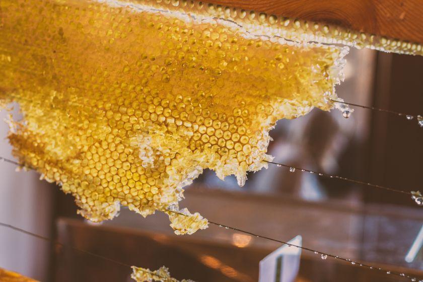 Gamtos iššūkiai medaus derliui nesutrukdė: bitininkai skelbia šviežio medaus sezono pradžią